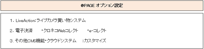 @PAGEによるホームページ作成によるオプション及びカスタマイズについて